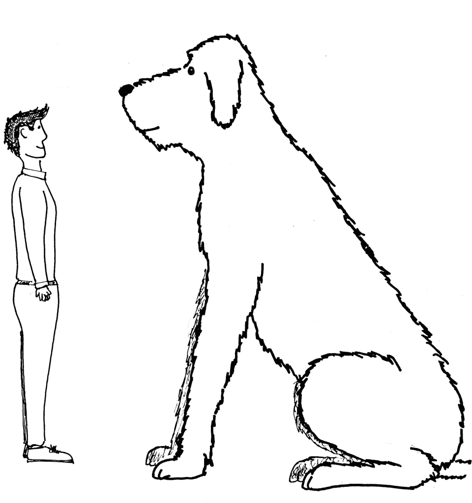 Clipsters dog size example drawing large dog grooming prices