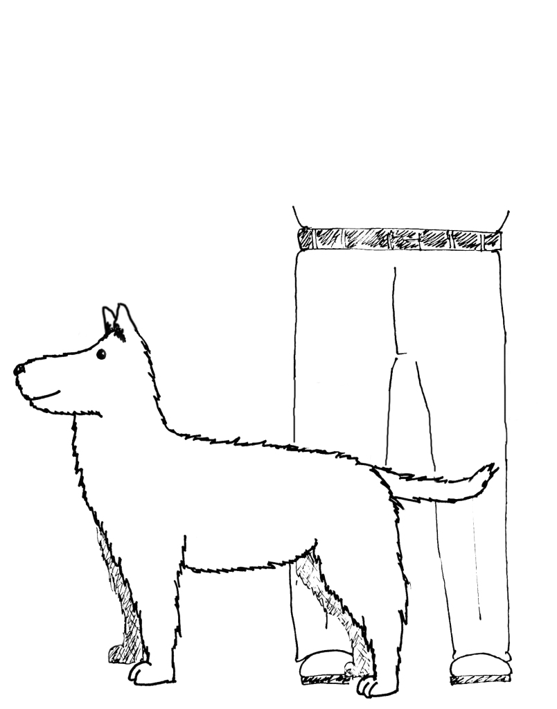 Clipsters dog size example drawing medium dog grooming prices